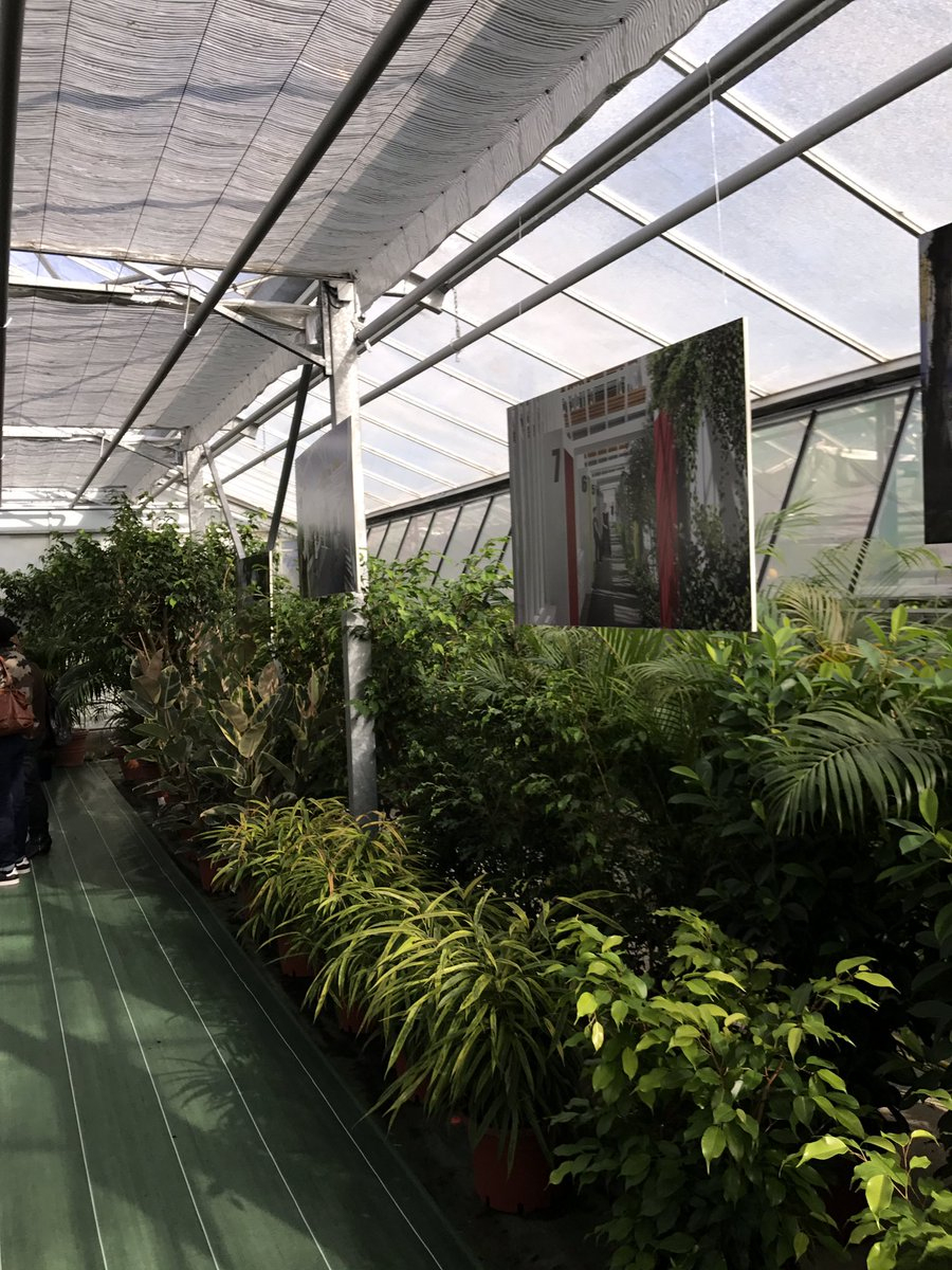 "Rouland On Twitter: ""projet Rénovation Des Serres Du Jardin ... tout Serre De Jardin Occasion"