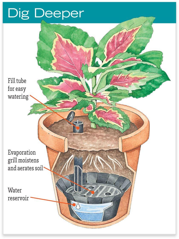 Self-Watering Pot Reservoir - 1 Gallon | Gardeners | Diy ... pour Jardin En Kit Pret A Planter
