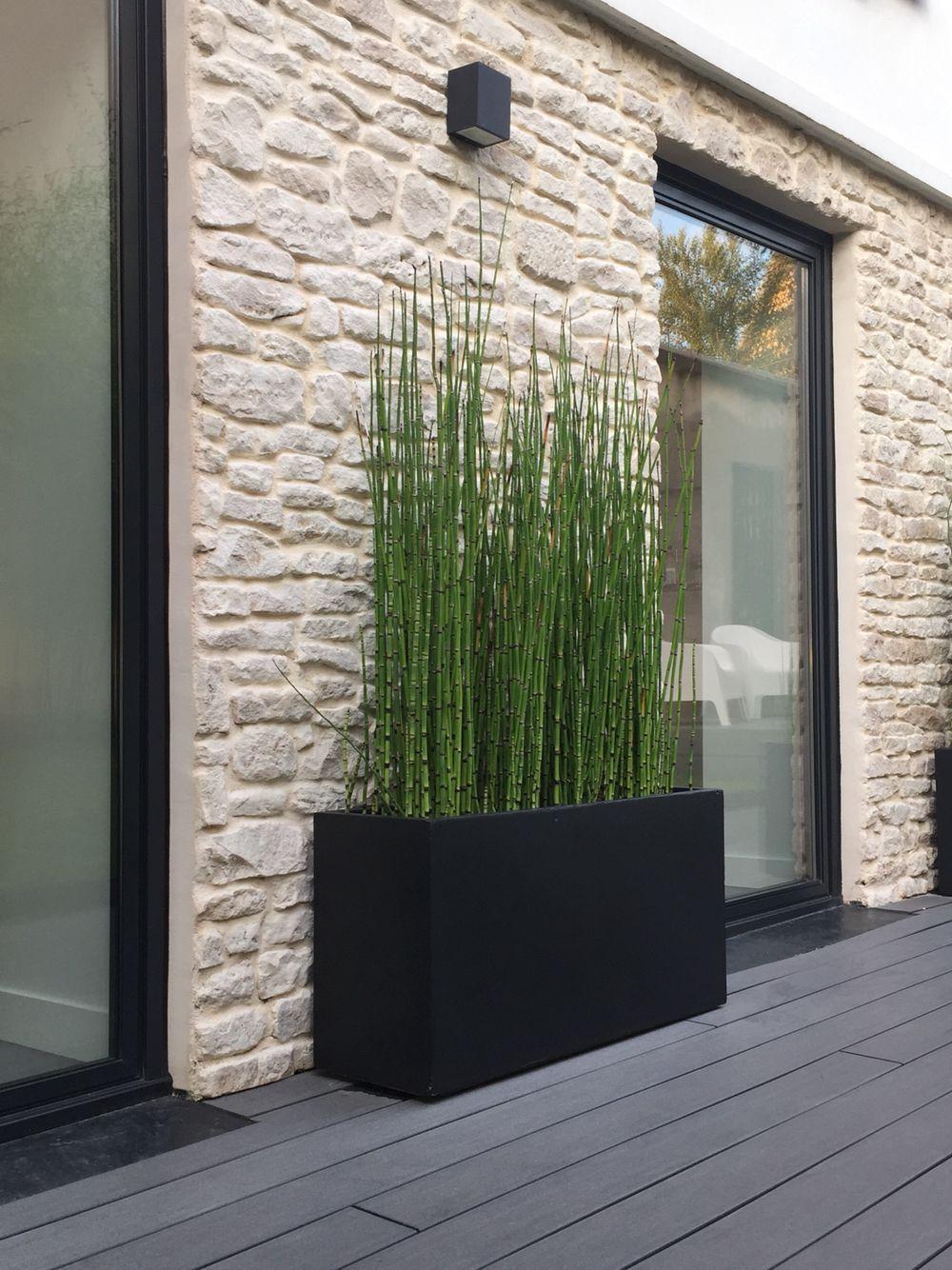 Séparation Mur Voisins | Amenagement Jardin, Terrasse Jardin ... dedans Amenagement Mur Jardin