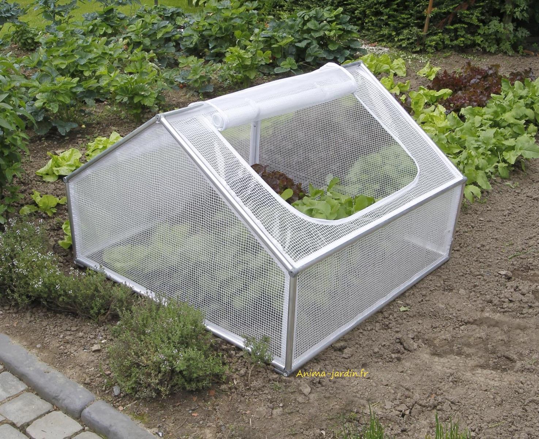 Serre Chassis De Jardin, 1M², Pour Semer Des Légumes, Pas ... pour Chassis De Jardin