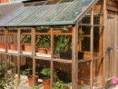 Serre De Jardin Au Meilleur Prix | Jardins-Animes destiné Serre De Jardin Belgique