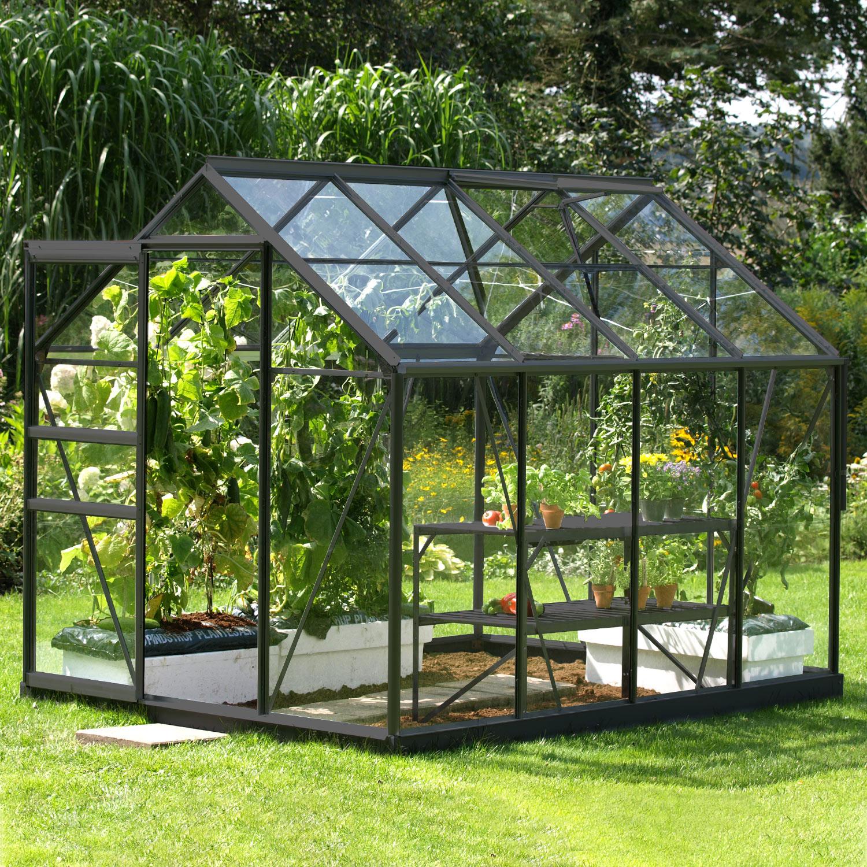 Serre De Jardin En Verre Trempé Allium Venus 5,00 M². Aluminium Laqué  Anthracite - Livraison Comprise serapportantà Serre De Jardin En Verre Trempé