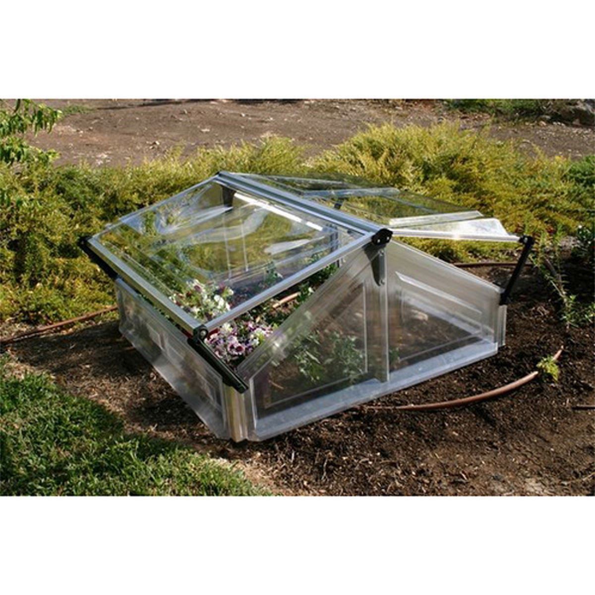 Serre Soleil Chassis concernant Chassis Jardin