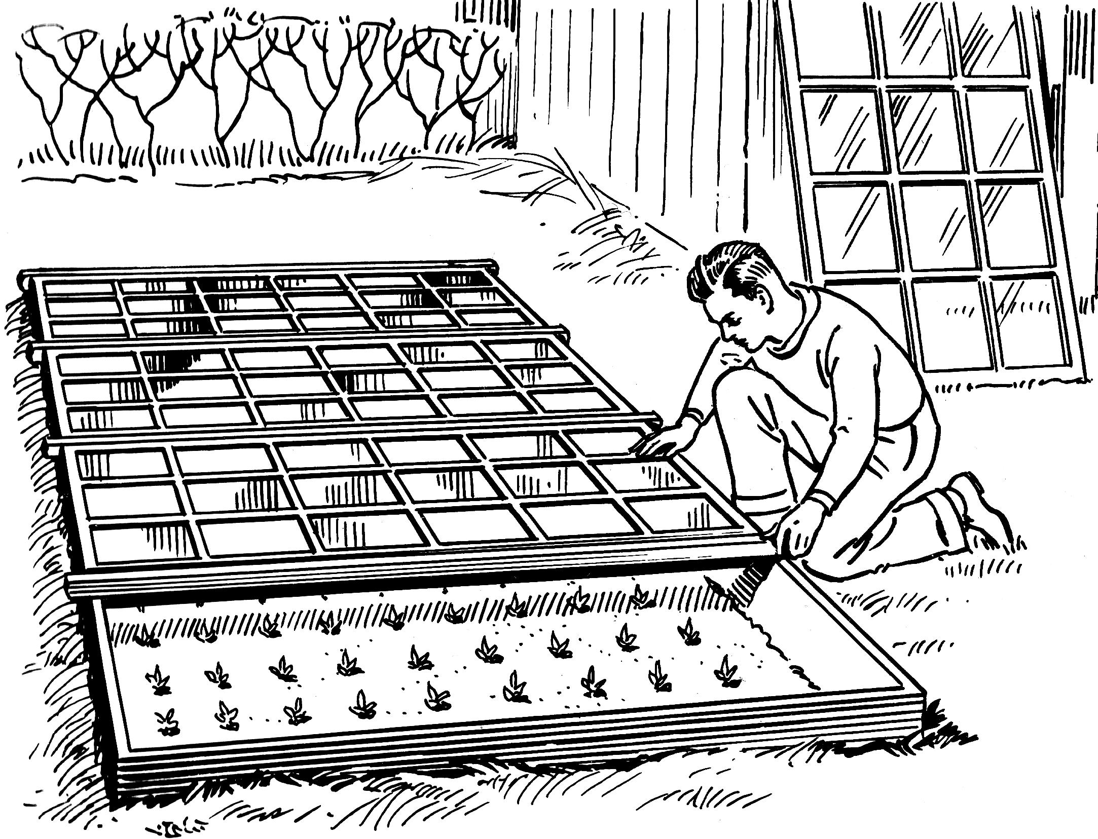Serre — Wikipédia dedans Fonctionnement D Une Serre De Jardin