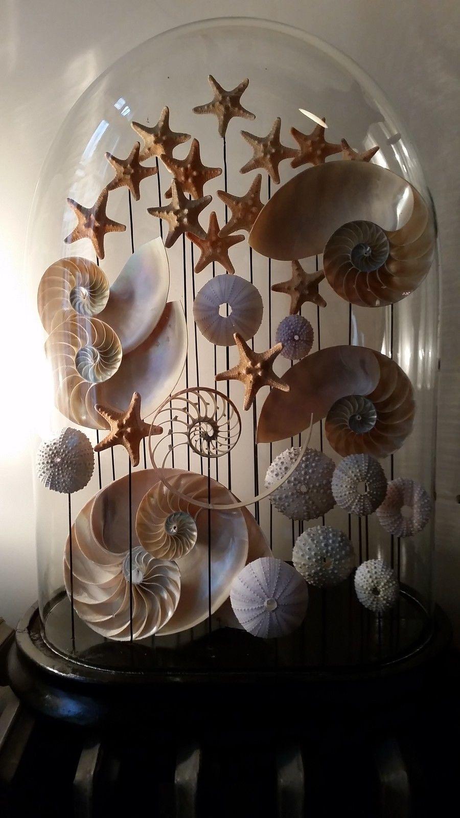 Shell Art Cloche. …   Plaj El Sanatları, Plaj Evleri Ve ... dedans Nain De Jardin Design