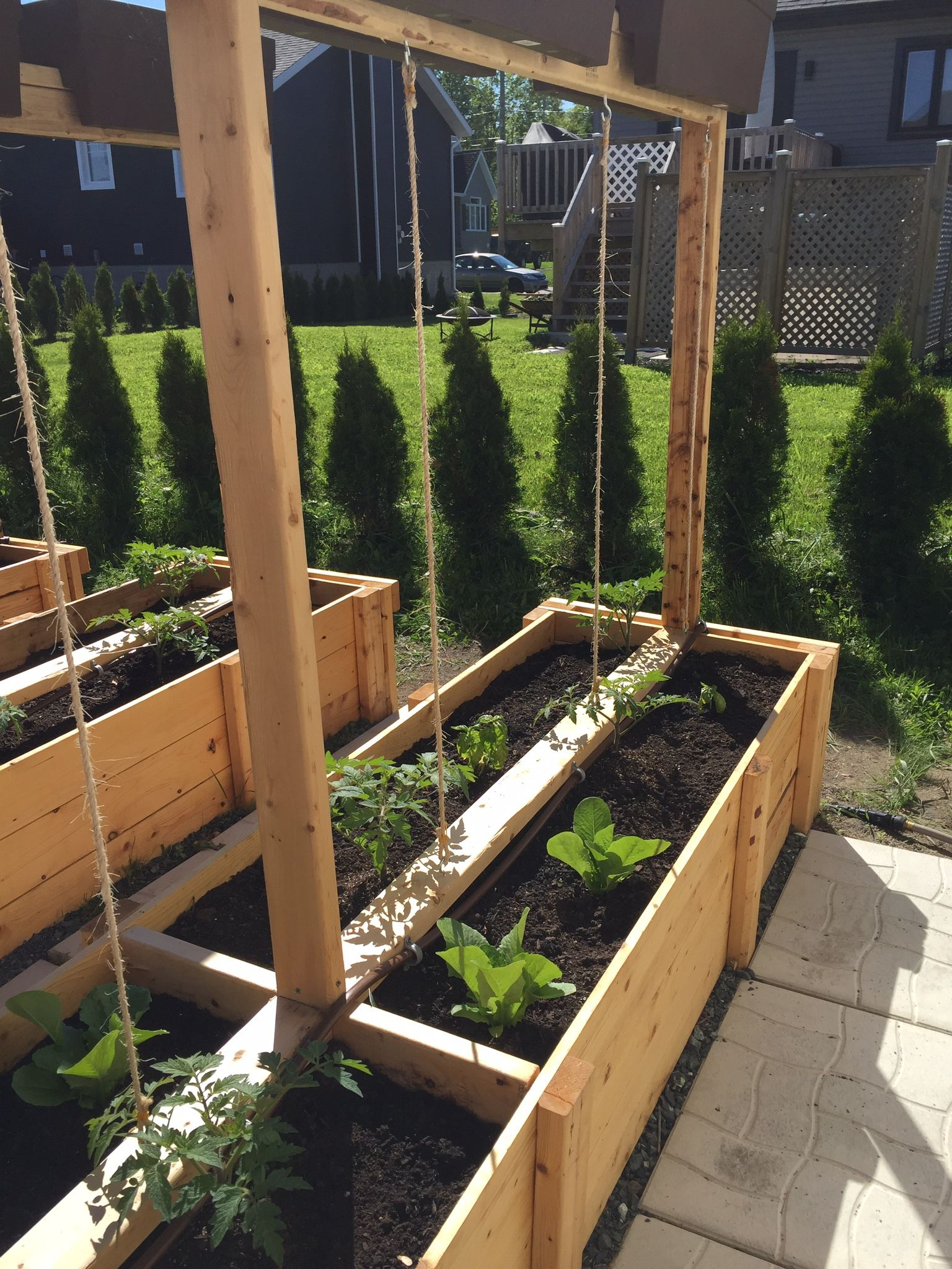 Support À Tomates | Bac Jardiniere, Bac De Jardinage, Jardin ... avec Bac De Jardin En Bois