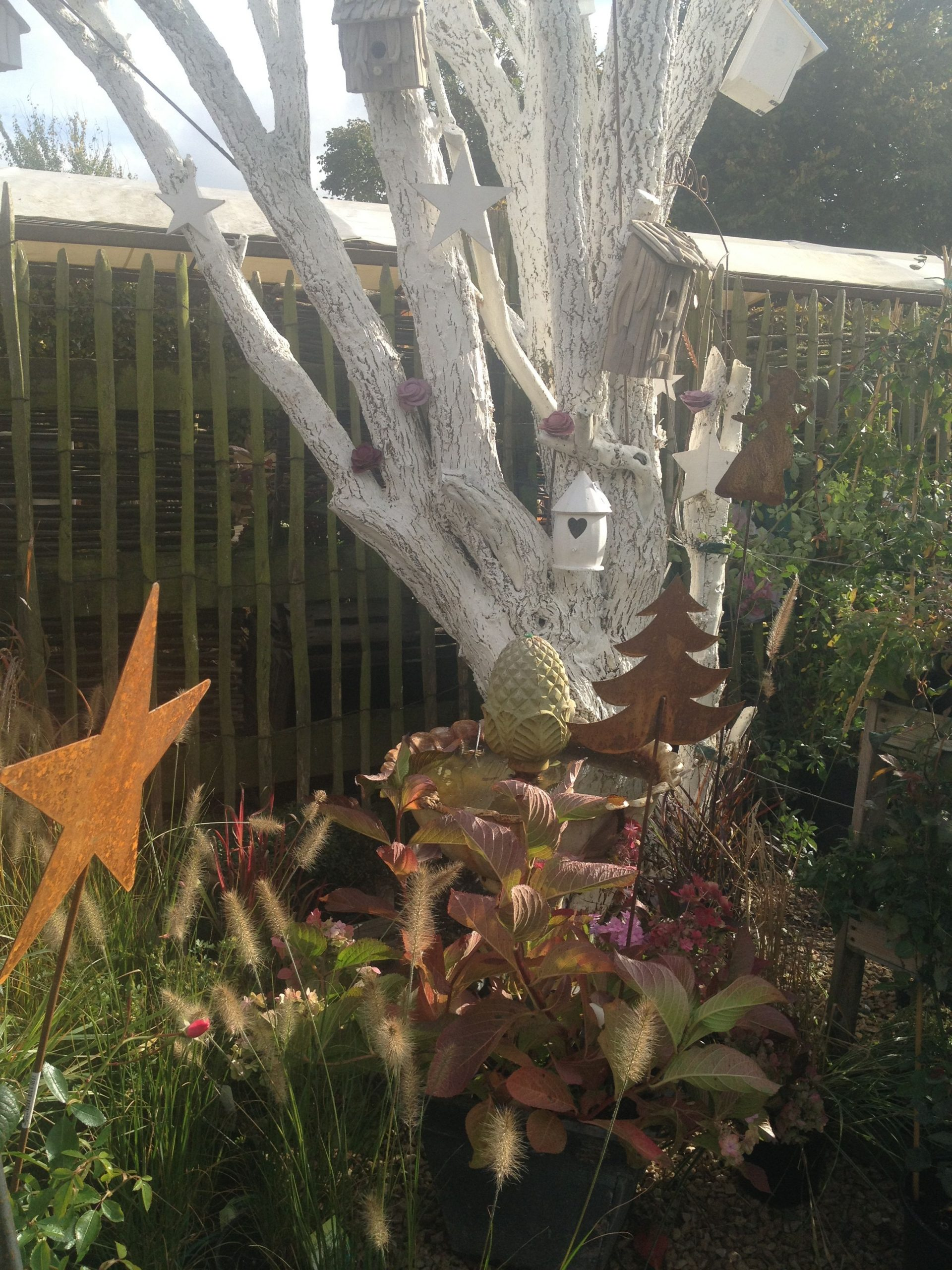 Sureau & Chaux Horticole #arbre #deco .filroses encequiconcerne Chaux Jardin