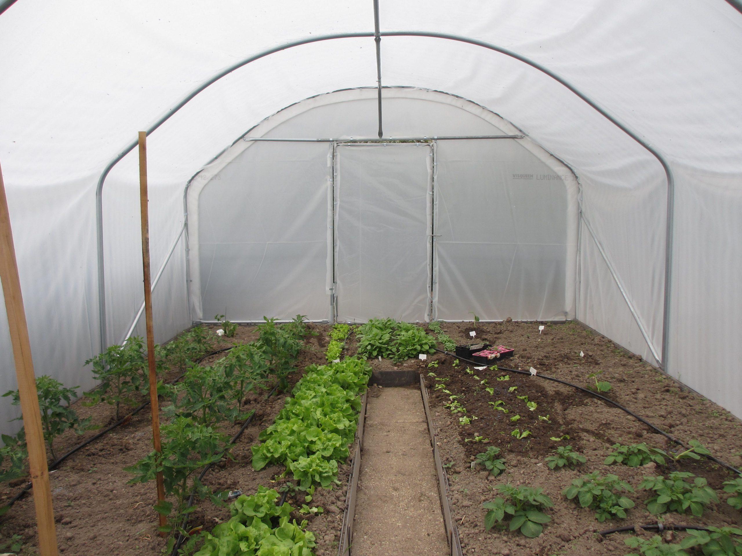 Système D'irrigation : Idéal Pour Optimiser Son Temps ... serapportantà Systeme Arrosage Jardin Potager