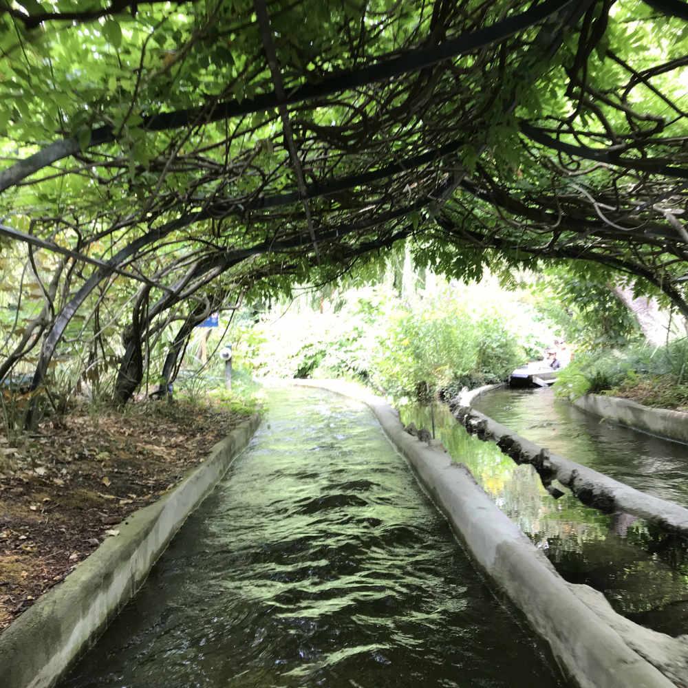 Table Jardin Bois Élégant Living In Paris France The Good ... tout Salon De Jardin Pas Cher Amazon