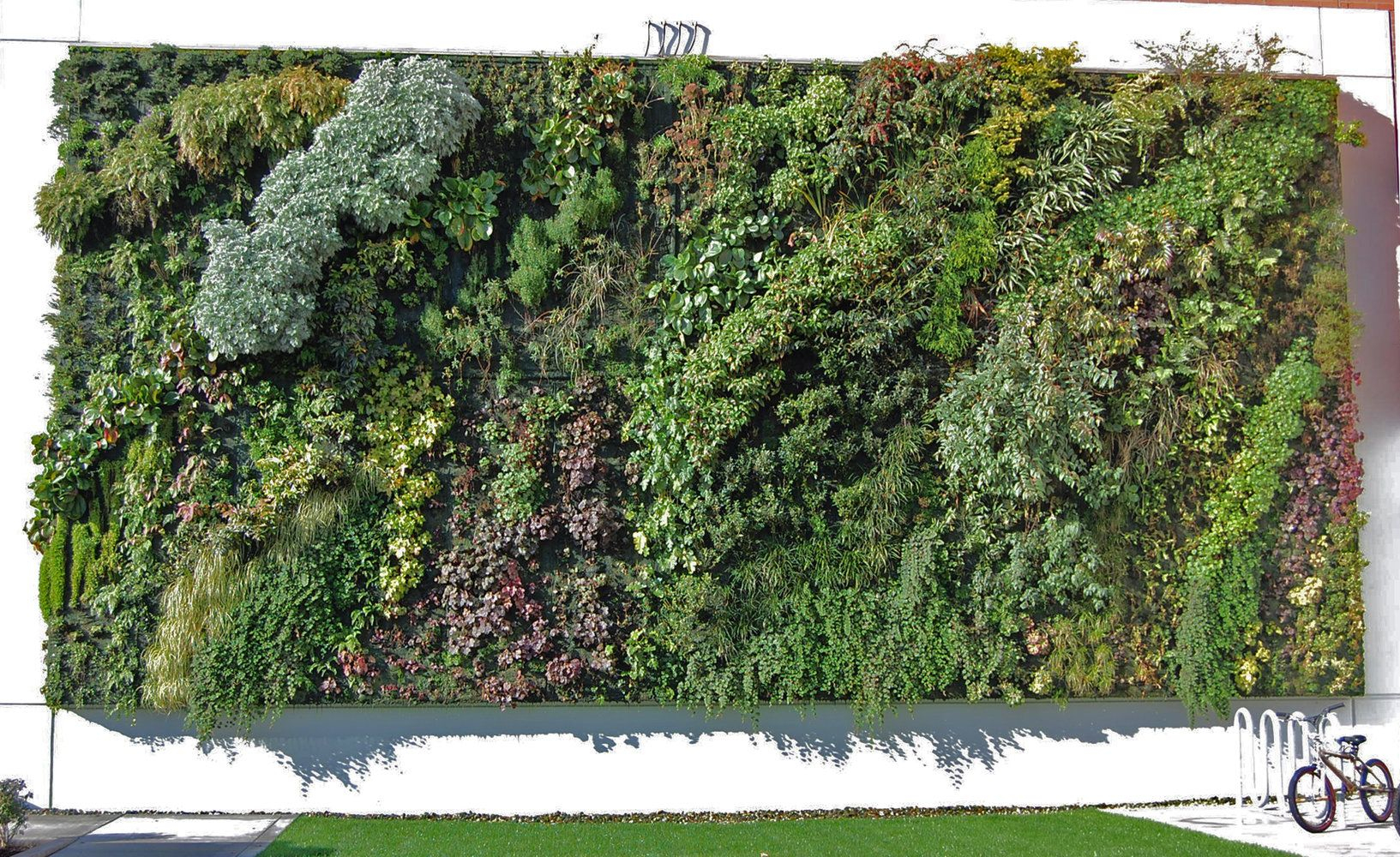 Tacoma Goodwill | Vertical Garden Patrick Blanc | Vertical ... encequiconcerne Treillis Blanc Jardin