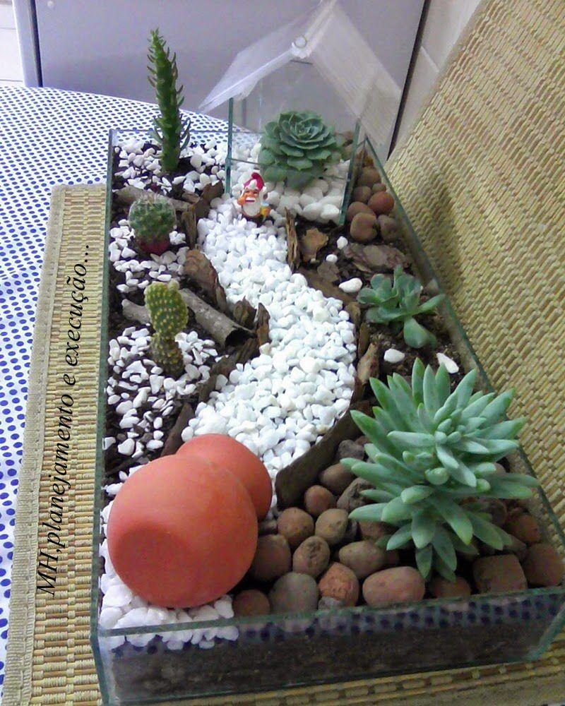 Terrario   Jardines, Jardinería En Macetas Y Suculentas tout Jardin Cactus Miniature