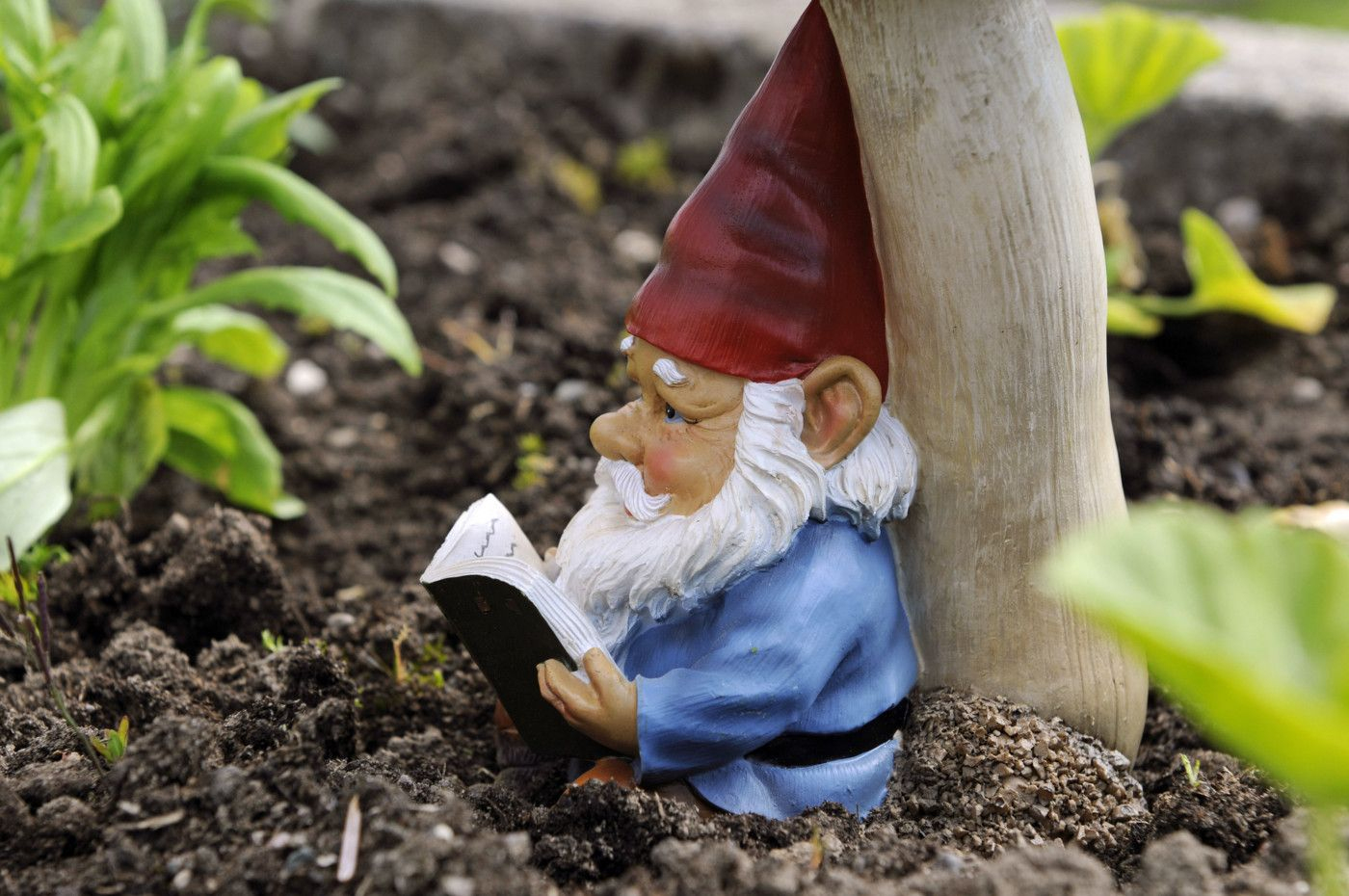 The Story Behind Garden Gnomes Is More Compelling Than You ... encequiconcerne Nain De Jardin Fuck