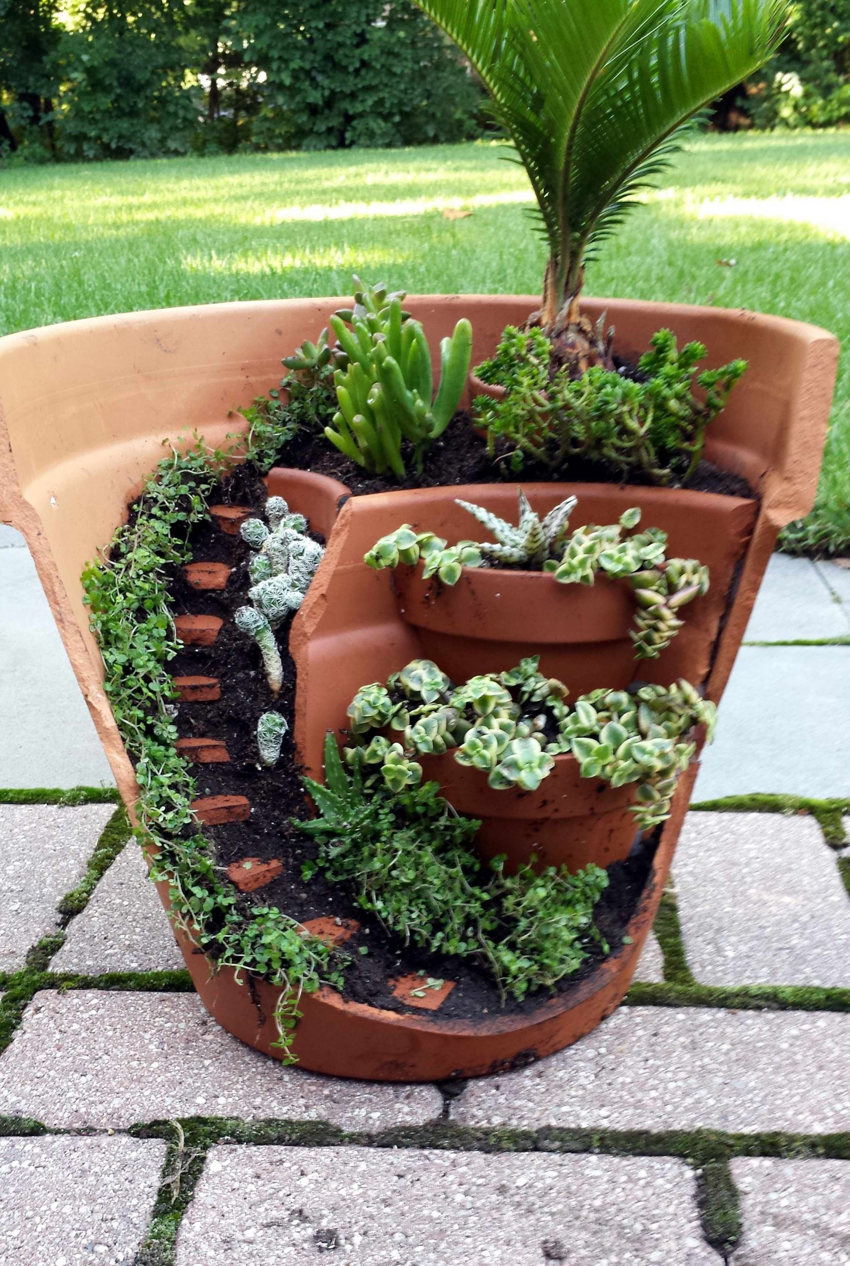 This Dish Garden Has A Half Broken Pot That Looks Like ... dedans Pot Pvc Jardin