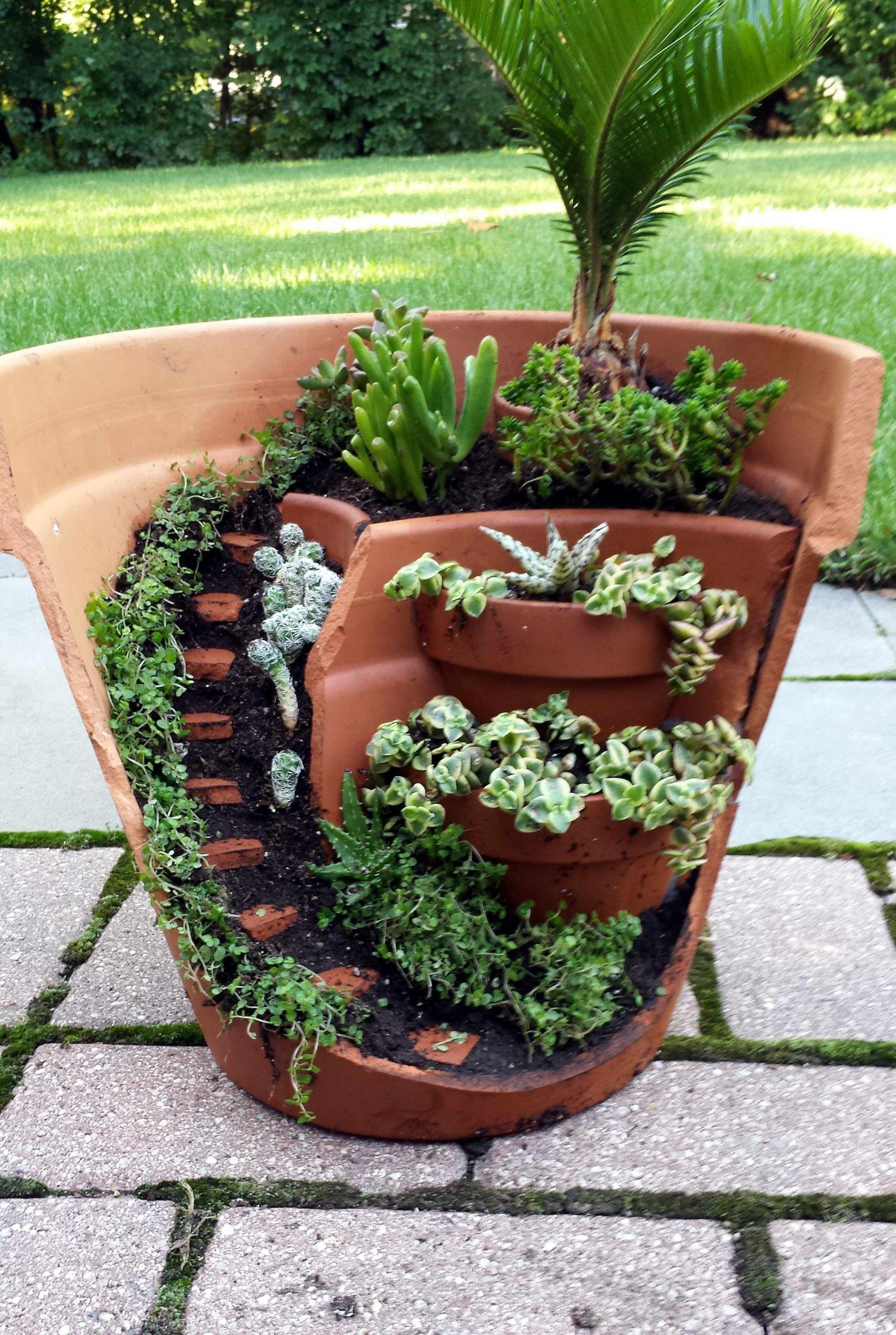 This Dish Garden Has A Half Broken Pot That Looks Like ... pour Accessoires Pour Jardin Japonais