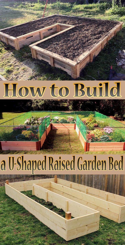 Tips How To Build A U-Shaped Raised Garden Bed. Creating ... destiné Construire Jardin Surélevé