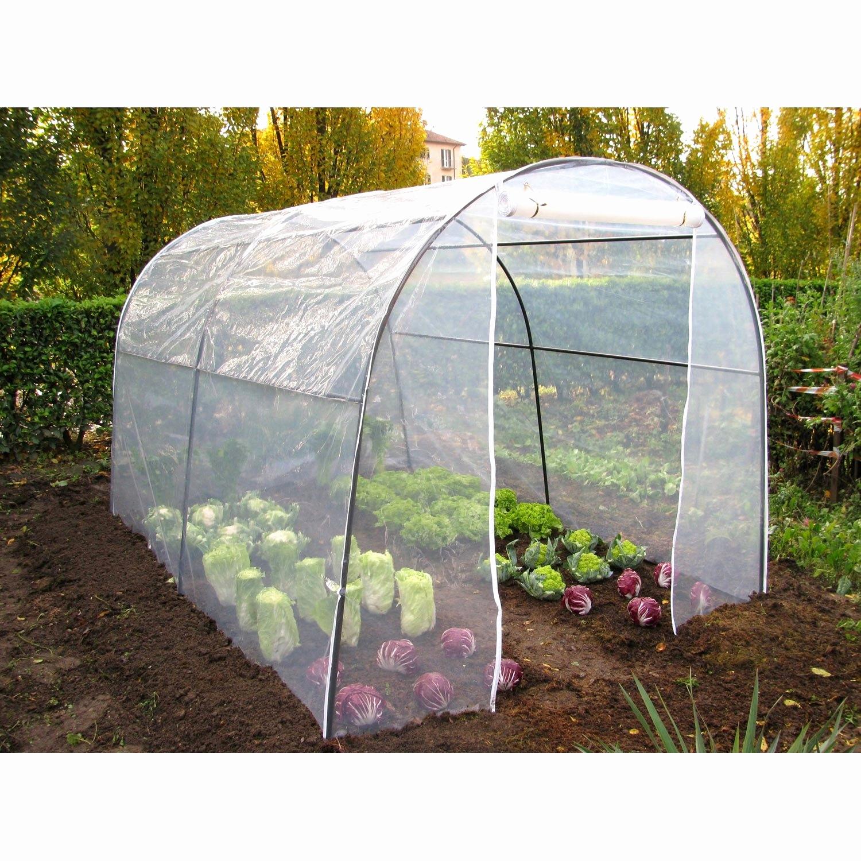 Tomates Une Serre Toute Simple Intéressant Fabriquer Petite ... intérieur Serres De Jardin Leroy Merlin