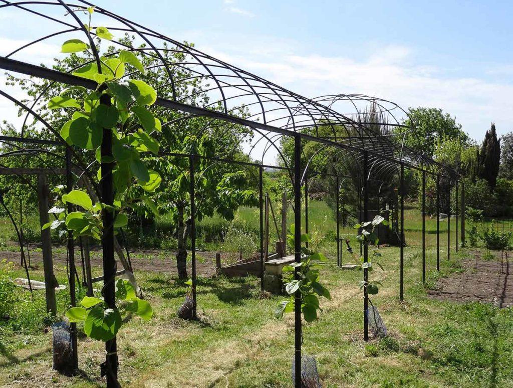 Tonnelle De Jardin En Fer Forgé serapportantà Kiosque De Jardin En Fer Forgé