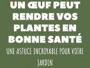 Toute Personne Ayant La Main Verte Sait Qu'avoir Une Bonne ... destiné Bonne Terre Pour Jardin