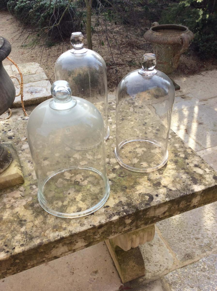 Trois Cloches De Maraicher En Verre, Xixe. - Antiquités Du ... tout Cloche En Verre Jardin