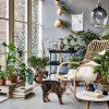 Tuin En Terras: Ideaal Voor Binnen- En Buitenpret | Deco ... destiné Verriere Jardin