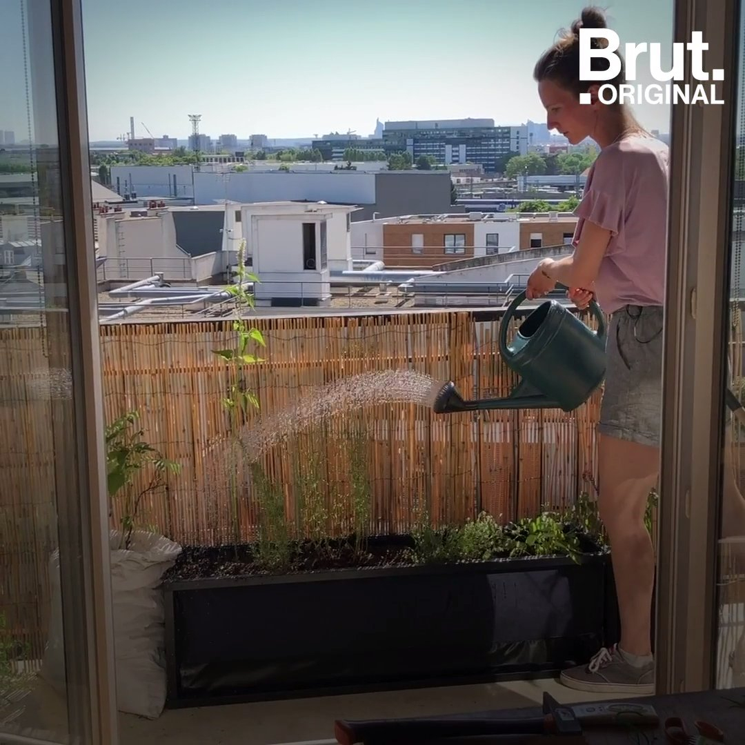 Tuto : Faire Un Potager Sur Son Balcon tout Faire Un Jardin Sur Son Balcon