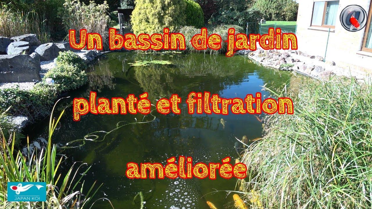 Un Bassin De Jardin Planté Et Filtration Améliorée serapportantà Plante Bassin De Jardin