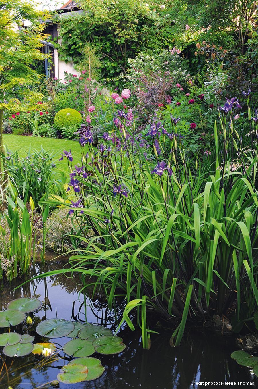 Un Jardin Boudoir En Ville   Jardins, Joli Jardin Et Beaux ... avec Plante Bassin De Jardin