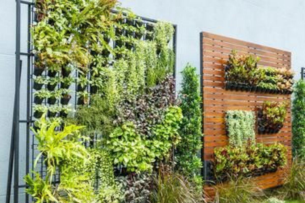 Un Jardin Vertical Sur Son Balcon concernant Faire Un Jardin Sur Son Balcon