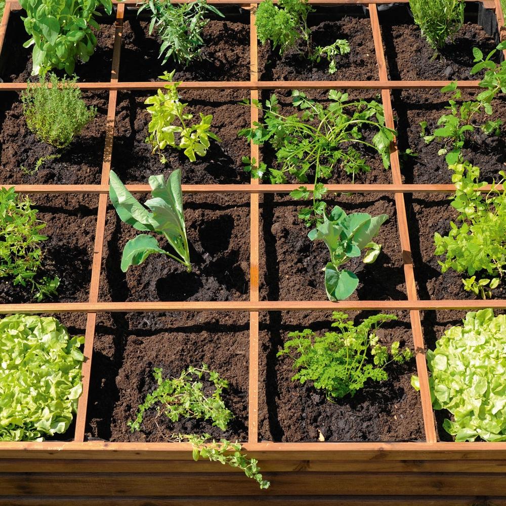 Un Mini Potager Sur Le Balcon encequiconcerne Faire Un Petit Potager Dans Son Jardin