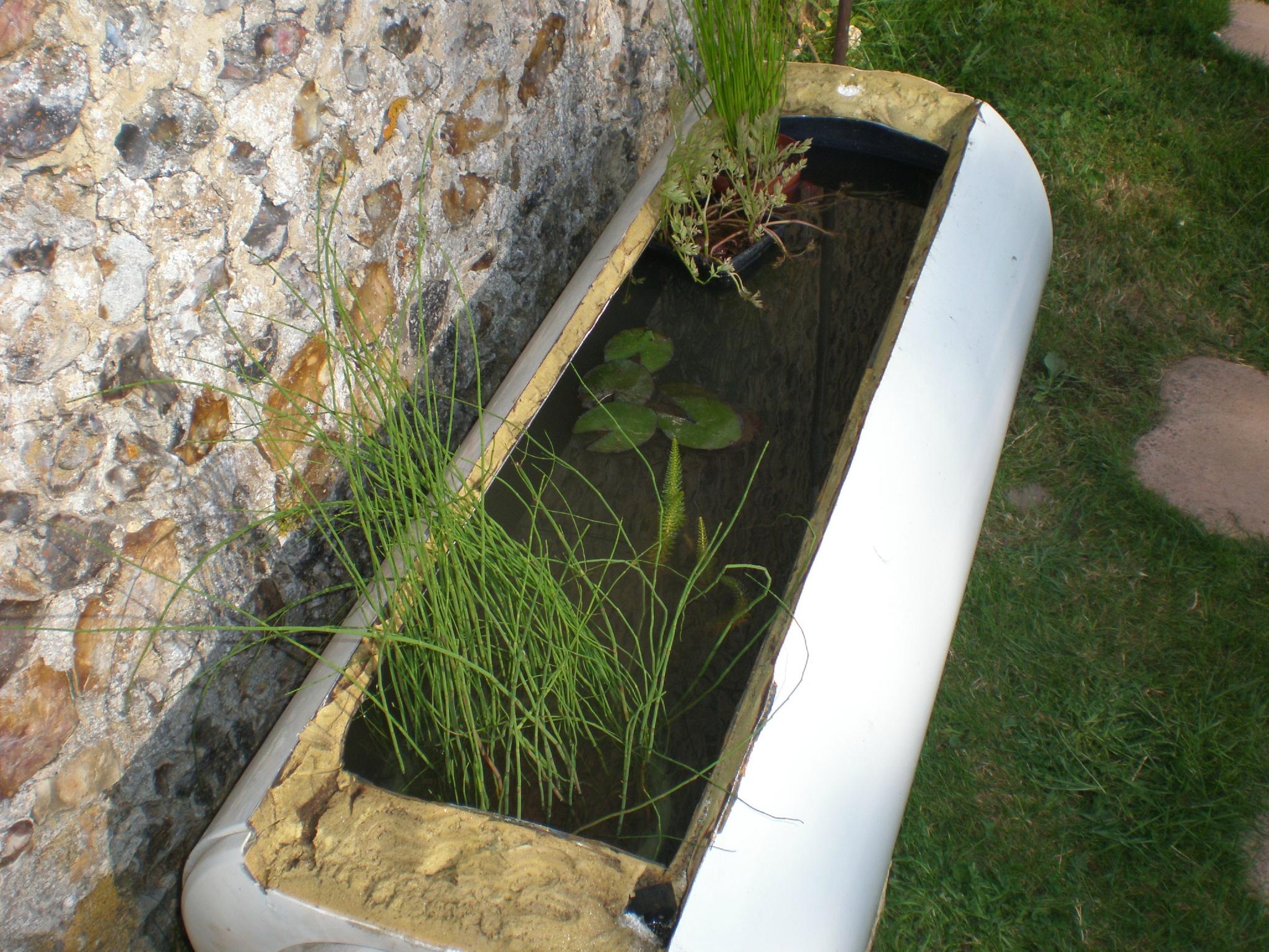 Un Petit Bassin Hors Sol - Boutures De Reves : Le Jardin De ... dedans Bassin De Jardin Hors Sol