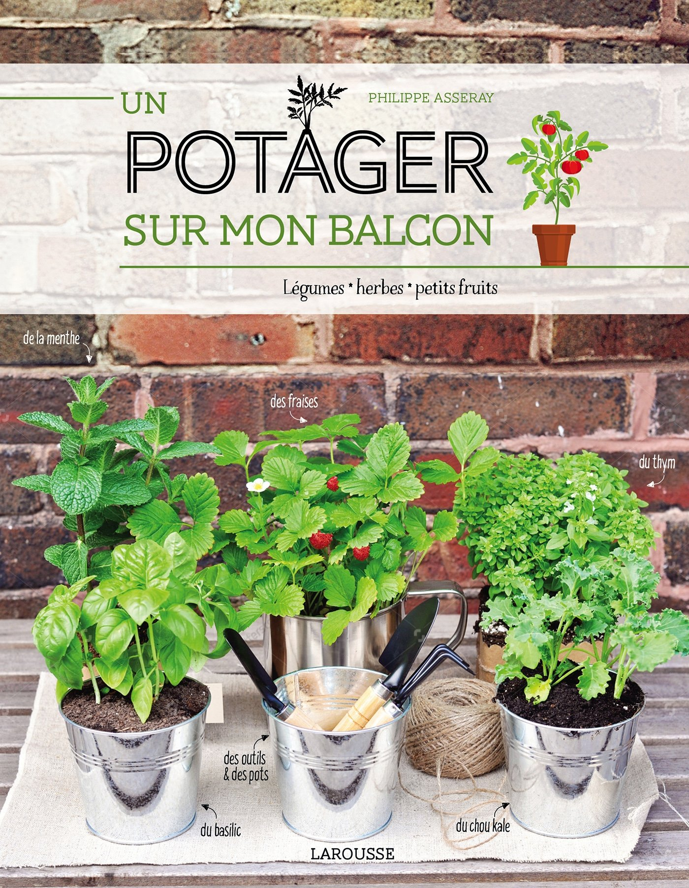 Un Potager Sur Le Balcon ? - Lecture, Cuisine Et Photographie intérieur Mini Jardin Balcon