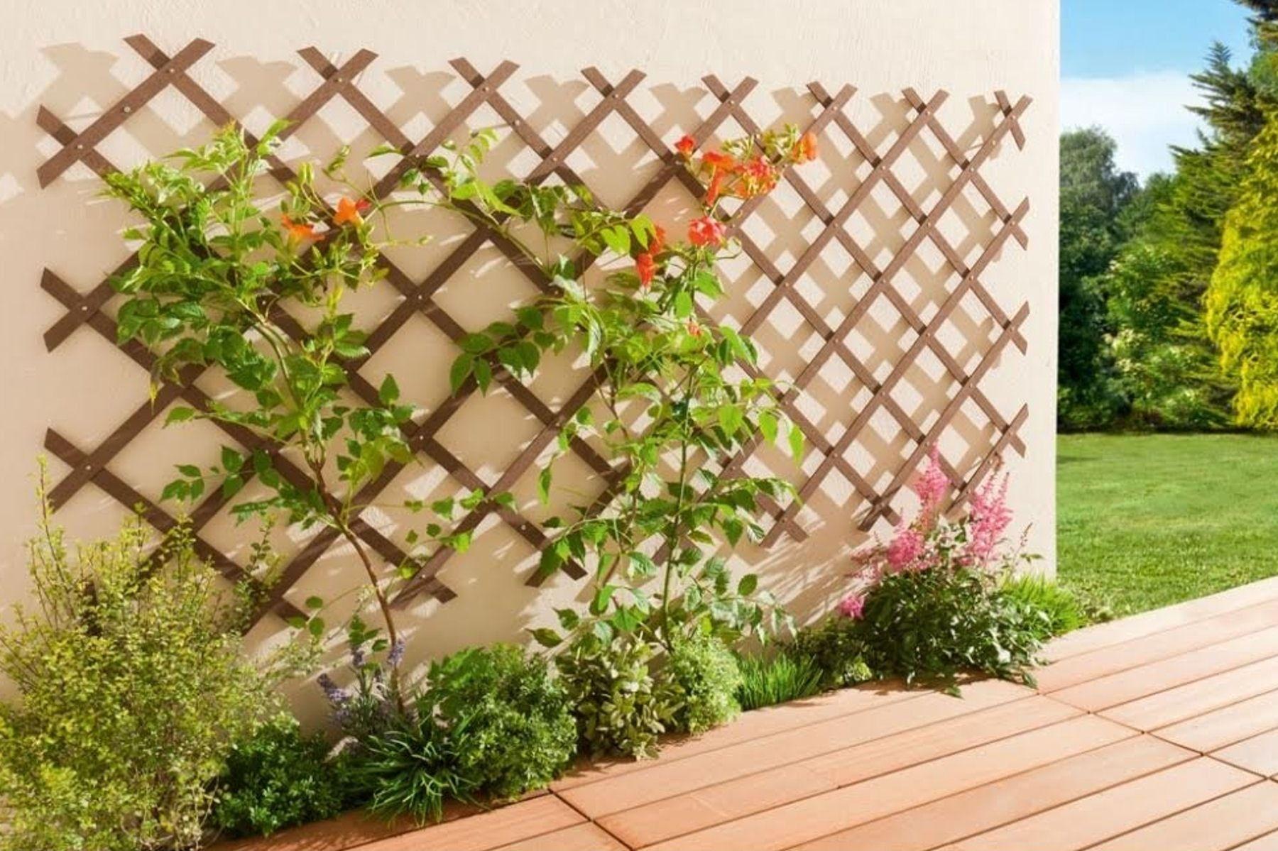 Un Treillis Pour Un Joli Mur Végétal : Balcons Et Terrasses ... encequiconcerne Decoration Pour Mur Exterieur De Jardin