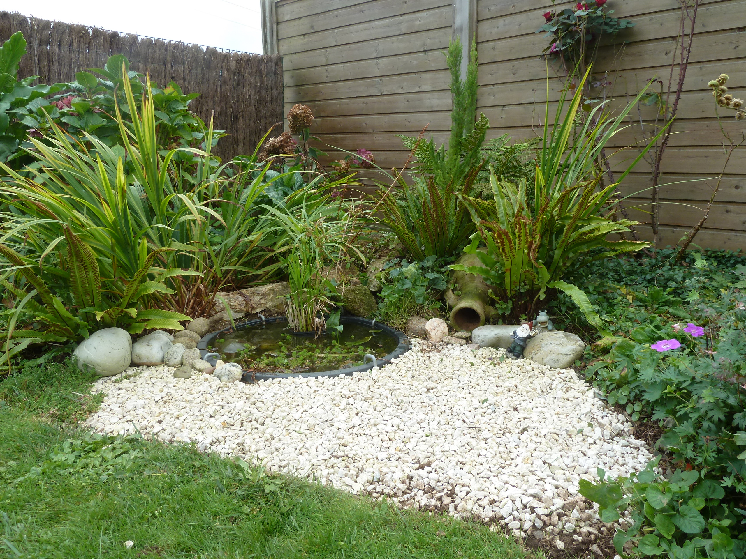 Une Saison Au Jardin | Notre Petit Jardin Breton concernant Petit Jardin Avec Bassin