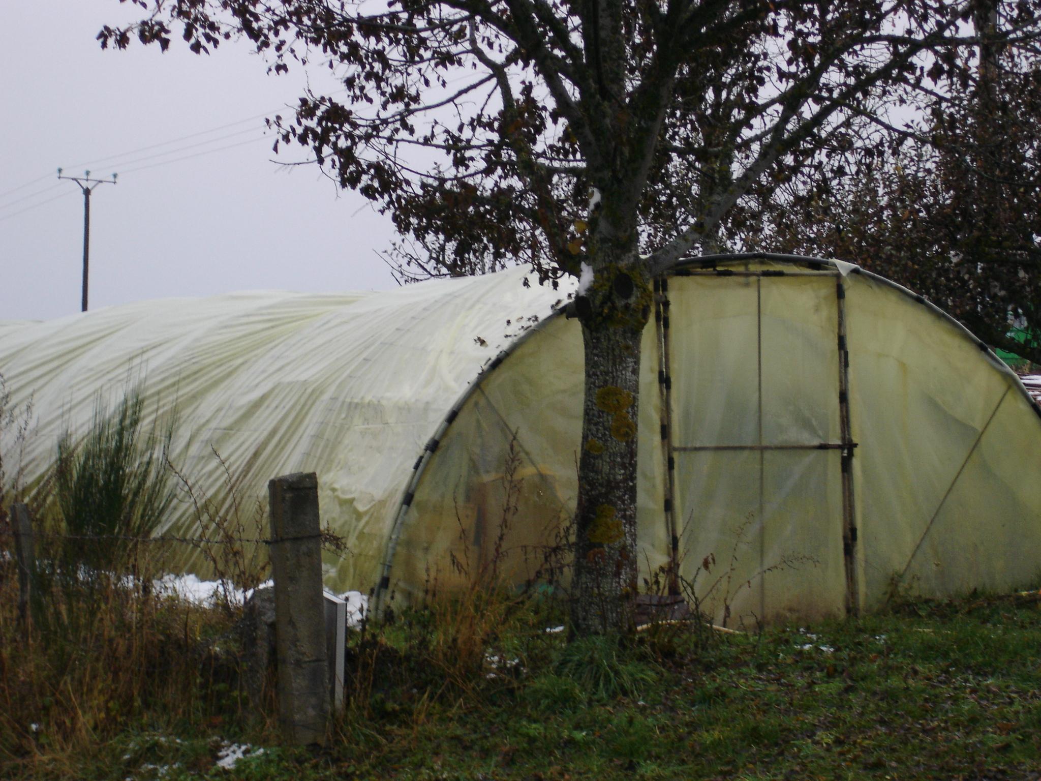 Une Serre Au Jardin Potager   Jardinage, Potager, Jardin concernant Serre De Jardin Occasion