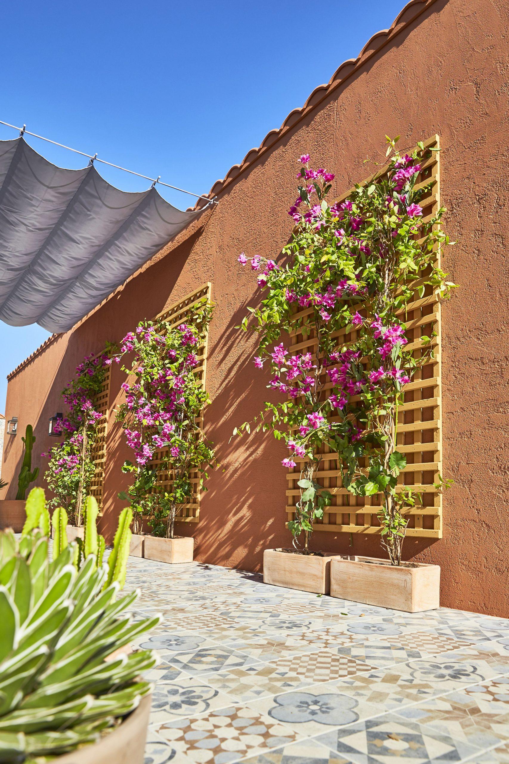 Une Terrasse Comme À Marrakech En 2020 | Deco Mur Exterieur ... à Amenagement Mur Jardin