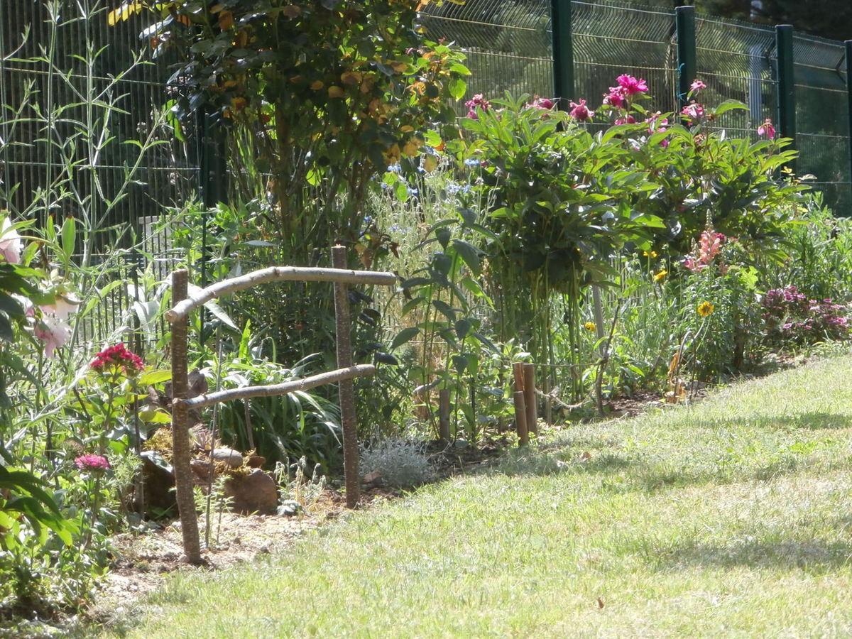 Une Toute Petite Barrière ... - Le Jardin Des Félins intérieur Petite Barriere Jardin