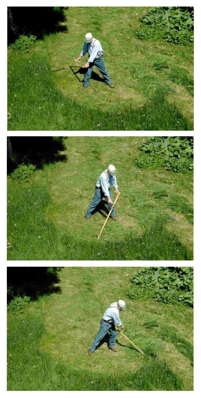 Usage De Faux   Jardinage, Trucs Et Astuces, Jardins avec Faux Outil De Jardin