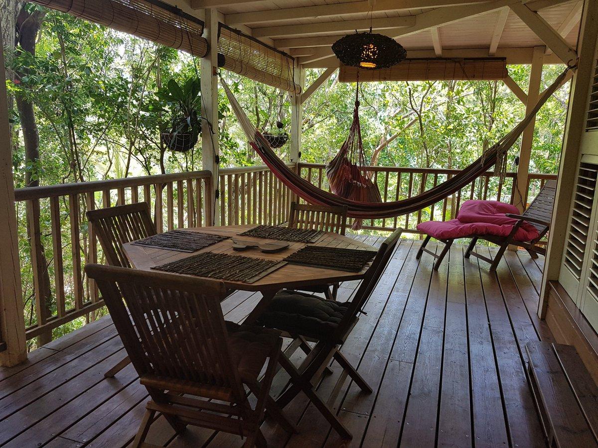 "Uživatel Au Jardin Des Colibris - Guadeloupe Na Twitteru: ""C ... destiné Au Jardin Des Colibris"