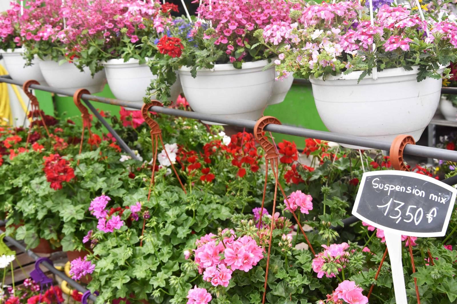 Vente Fleurs Et Plantes À Villefranche-Sur-Saône - Les ... serapportantà Serre De Jardin Occasion