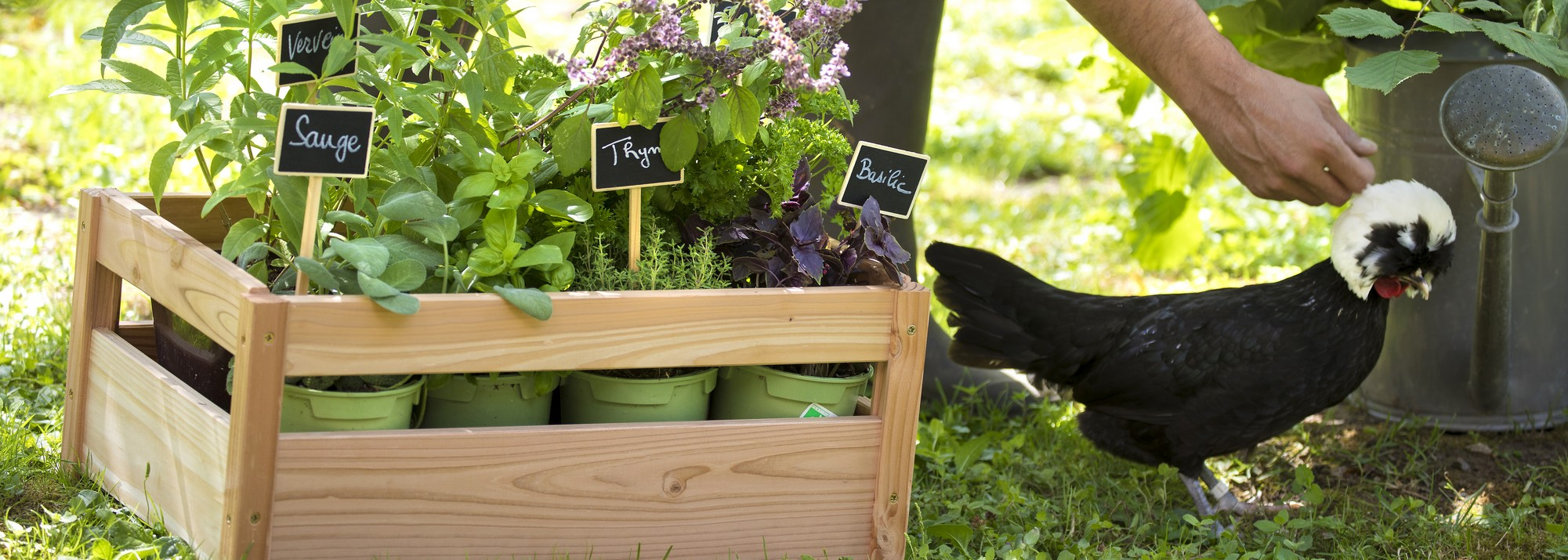 Ventes Privées Botanic® : Une Sélection De Produits Pour Le ... à Vente Privée Jardin