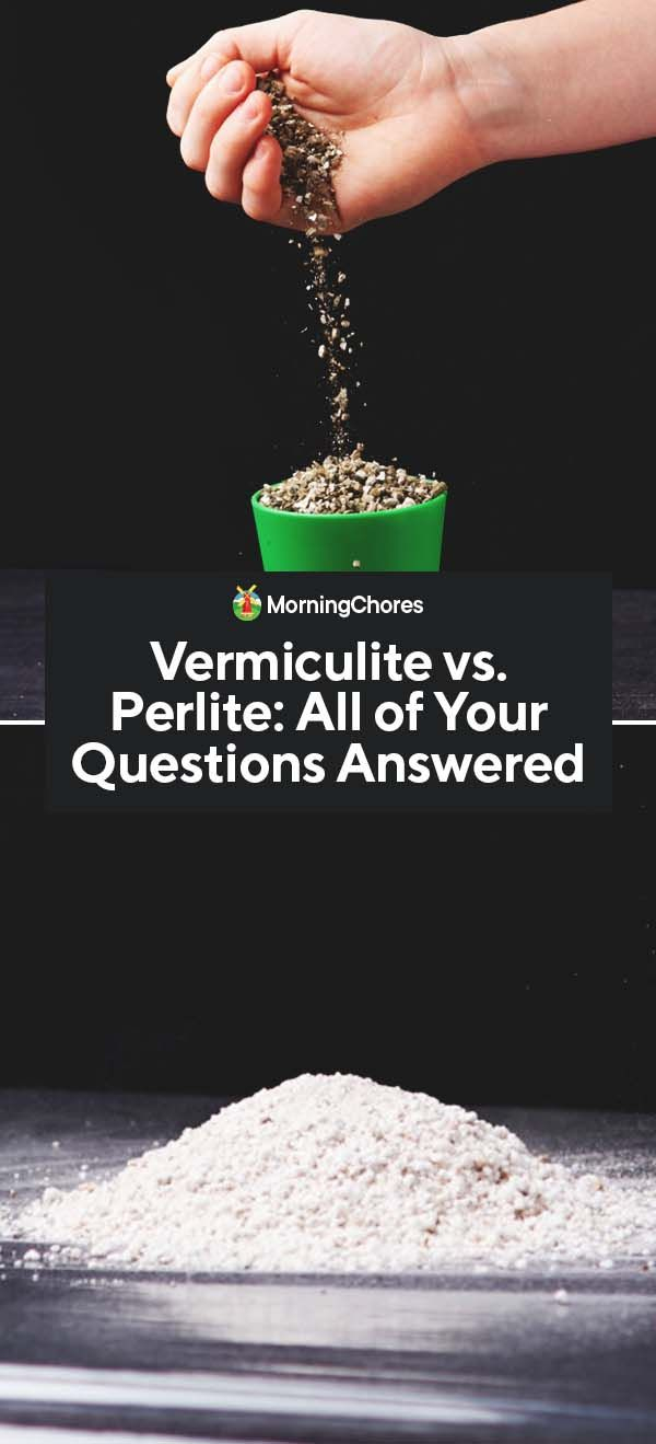 Vermiculite Vs. Perlite: Similarities, Differences, And ... dedans Perlite Jardin
