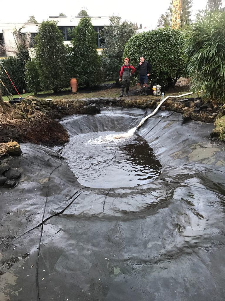 Vidange Et Nettoyage D'un Étang D'un Jardin - F&s Jardinage concernant Entretien D Un Bassin De Jardin