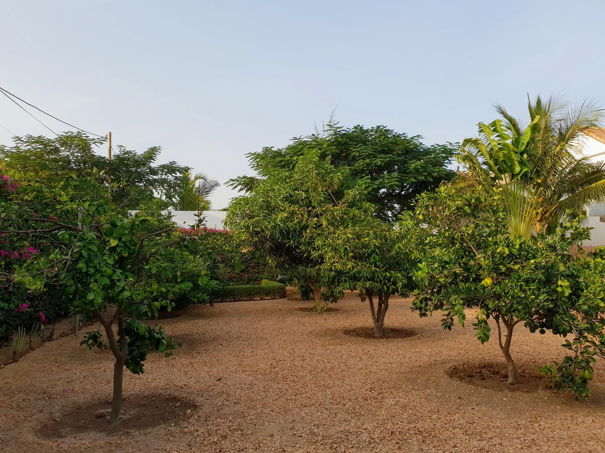 Villalar La Maison Blanche À Ngaparou, (Senegal Ngaparou ... destiné Salon De Jardin Totem