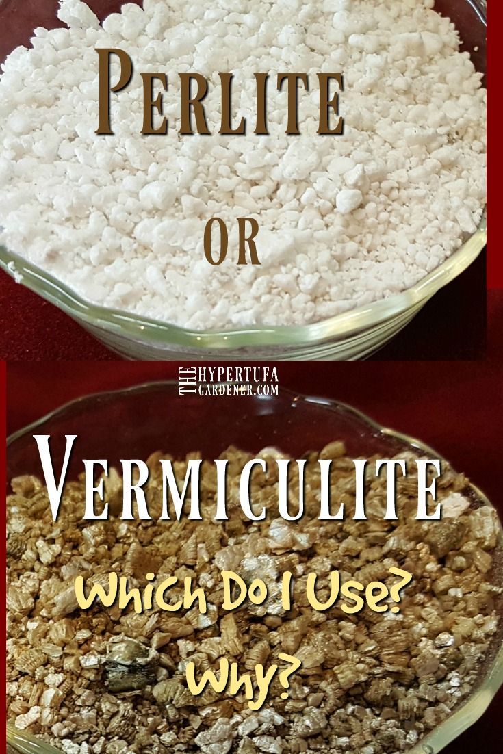 What's It Gonna Be? Vermiculite Or Perlite For Hypertufa ... destiné Perlite Jardin