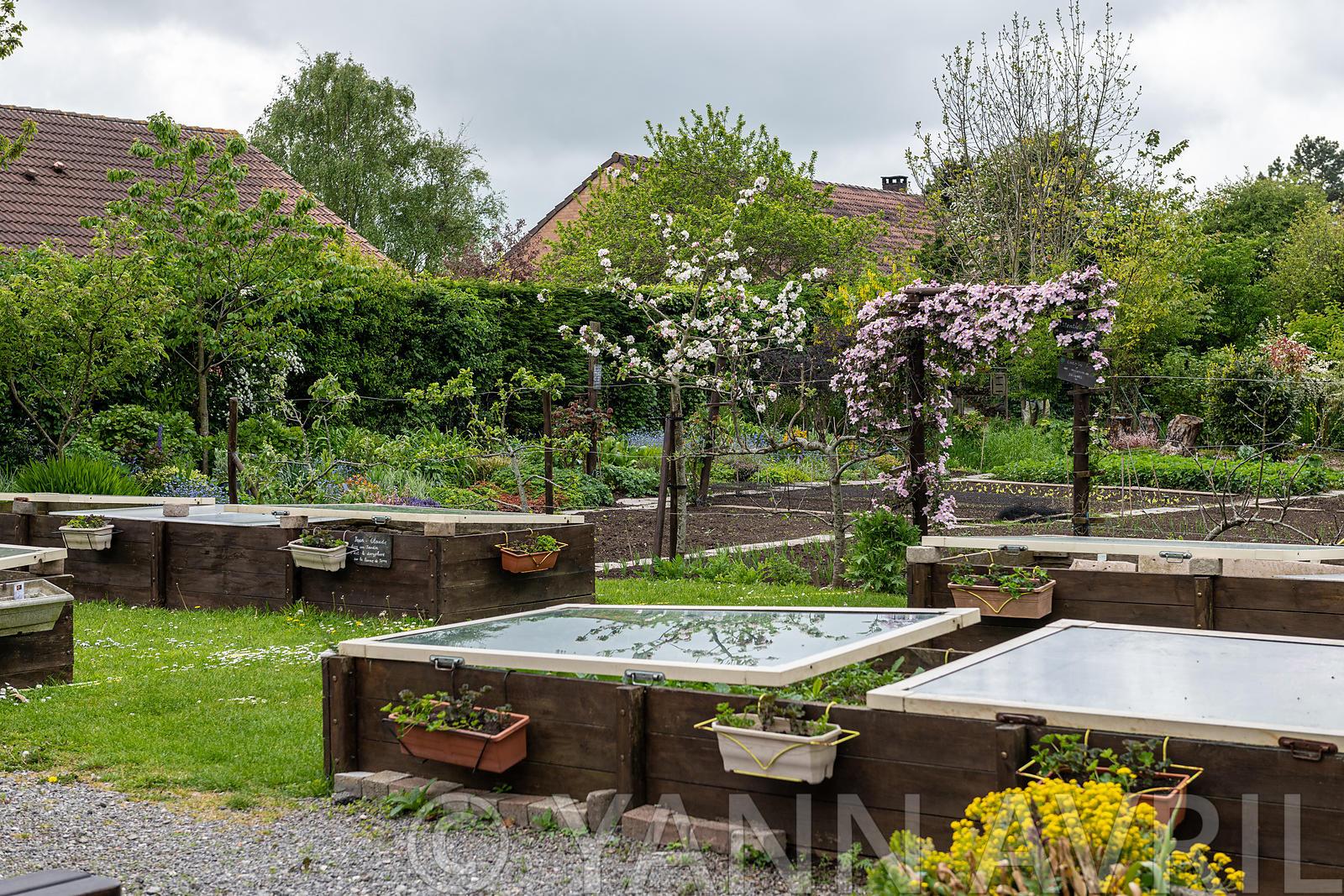 Yann Avril Photography | Garden And Nature Vegetables Under ... avec Chassis De Jardin