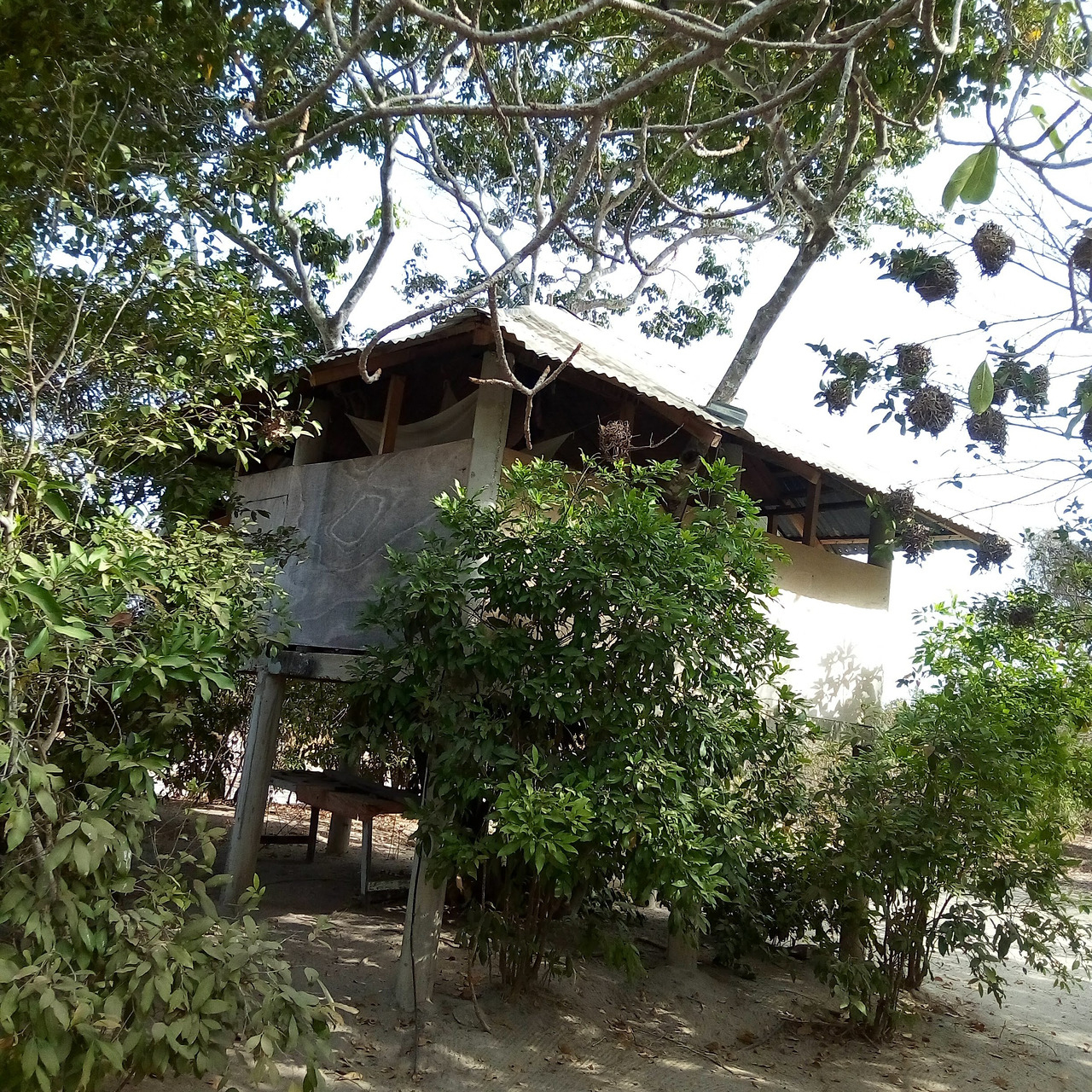 Ziguinchor Region Seyahati, 2020 - Tripadvisor intérieur Paillote Jardin