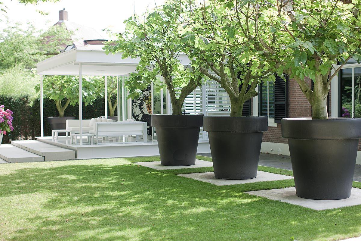 090716-Bobmanders-0164.jpg | Tuin, Tuin Ideeën, Tuin Gras pour Grand Pot Pour Jardin