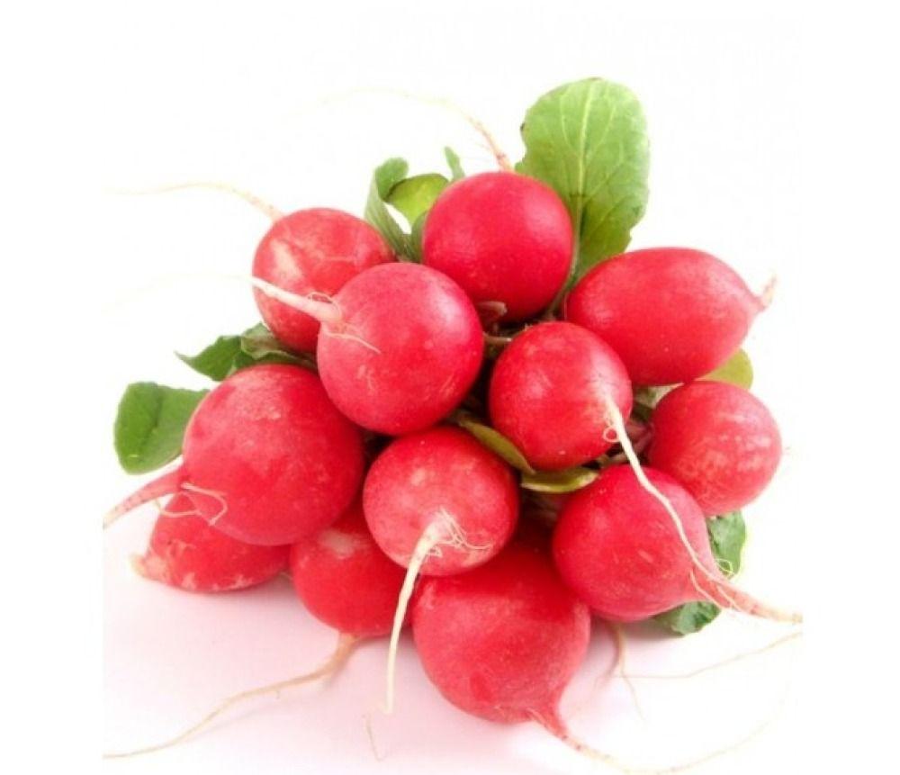 100 Graines De Radis Rouge Rond Légume Pour Jardin Potager ... encequiconcerne Pot Rouge Jardin