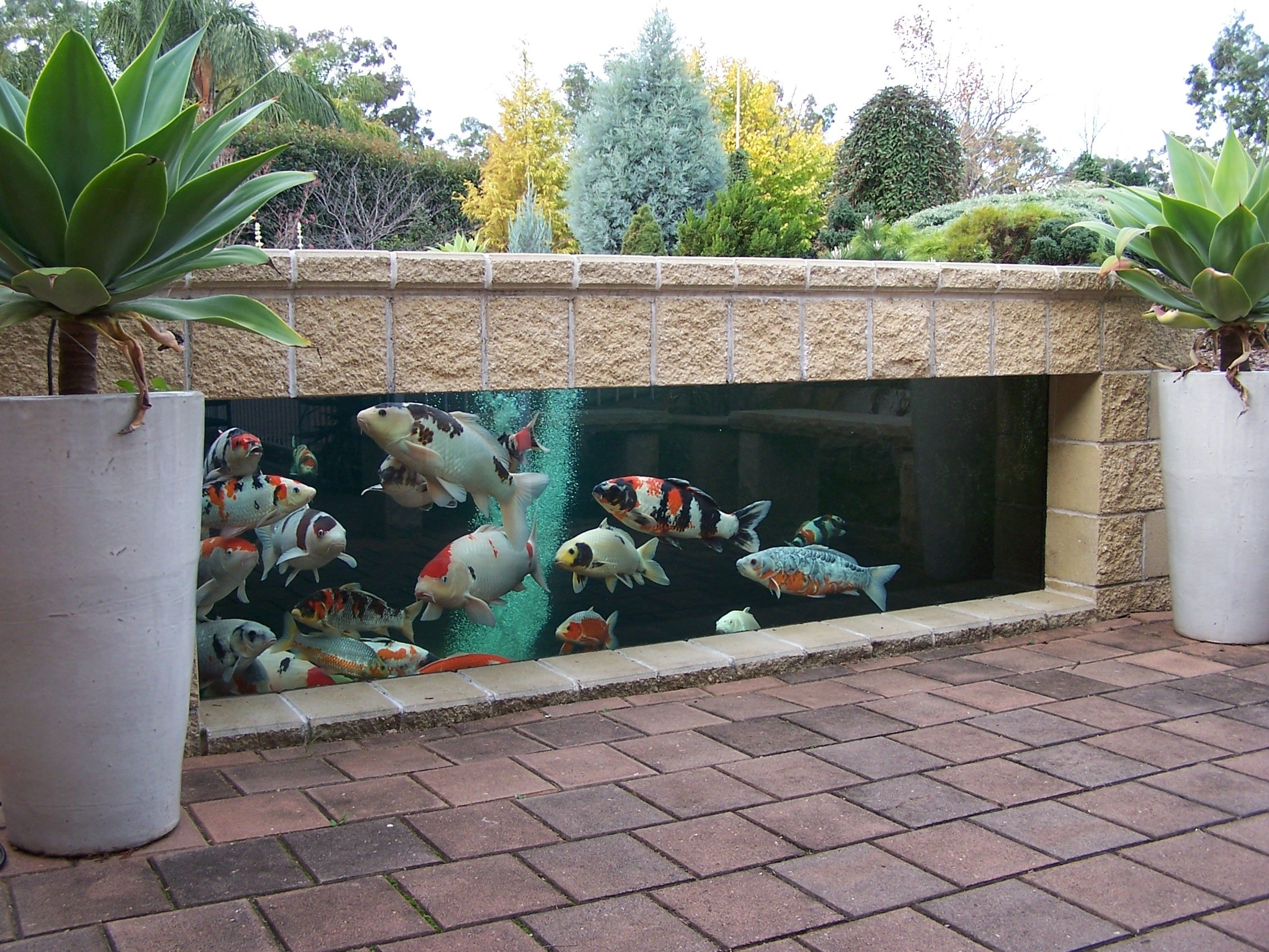 35 Sublime Koi Pond Designs And Water Garden Ideas For ... dedans Bassin Jardin Hors Sol