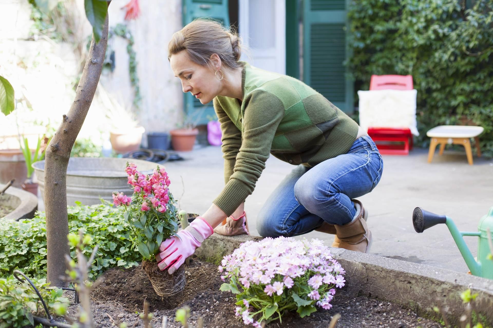 7 Idées D'aménagement Pour Jardin Pas Chères | Envie De Plus concernant Separation Jardin Pas Cher